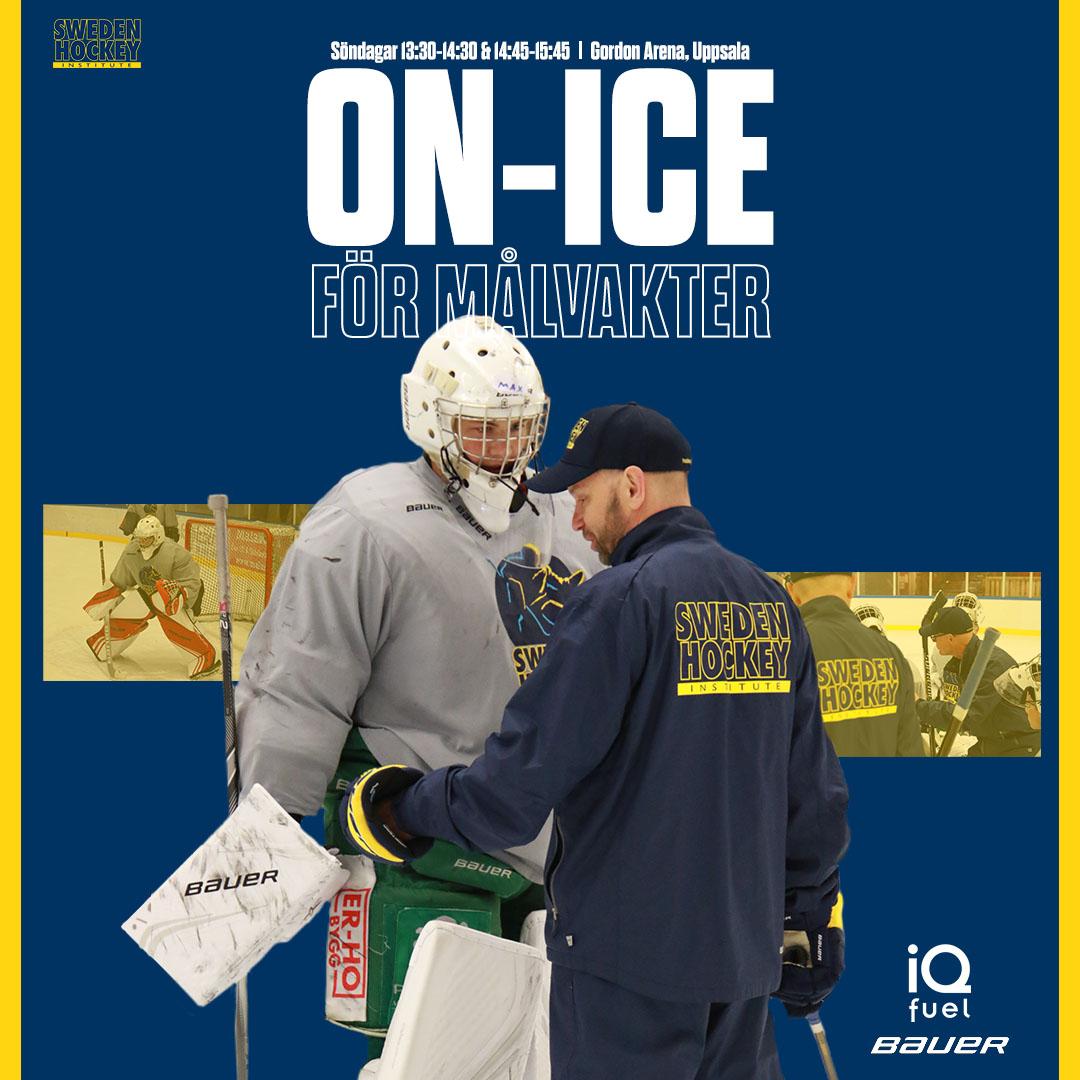 on-ice-malvakter